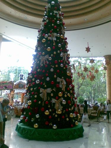 2 Cho thuê cây thông Noel tại Hà Nội
